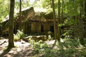 wilczy-szaniec-ruina